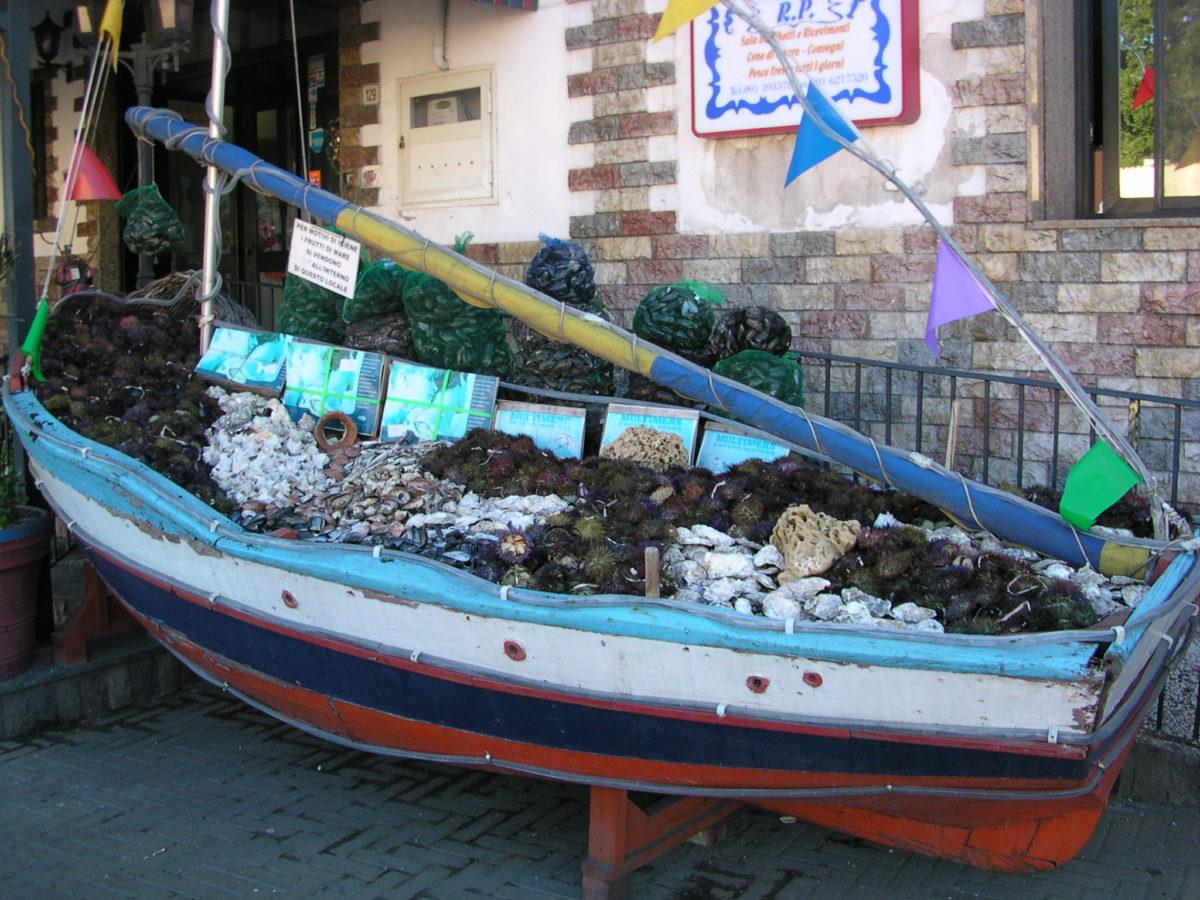 foto barca