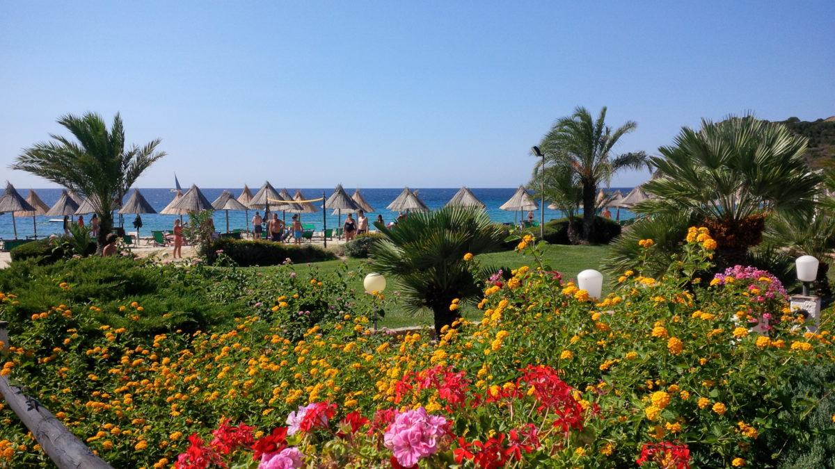 i fiori rossi e il mare di Egmont